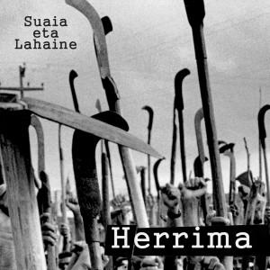 Herrima_azala copia